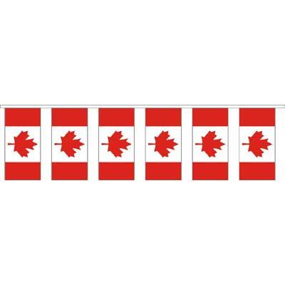 Canada Flag Pennant