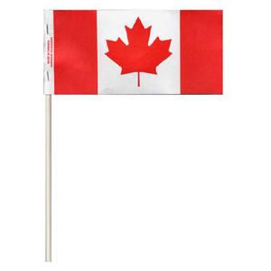 Canada Flag on stick