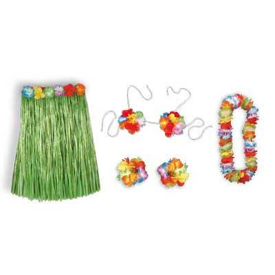 Hula Costume - adult